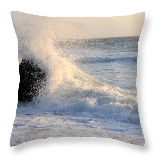 Splash 2 Throw Pillow by Catherine Lau