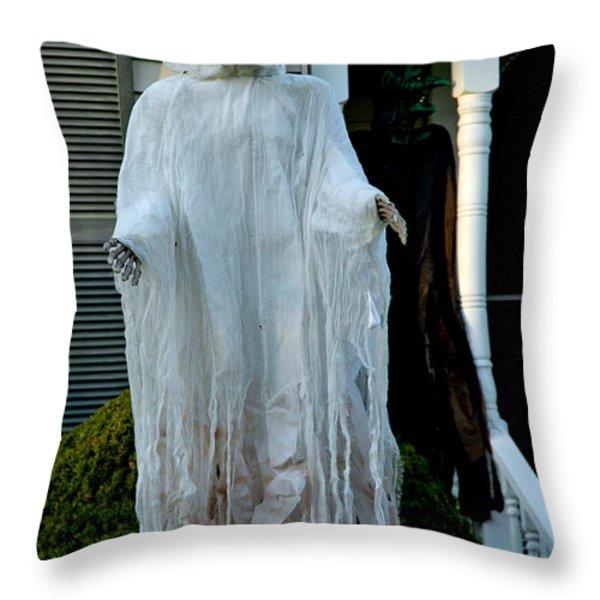 Spooky Flight Throw Pillow by LeeAnn McLaneGoetz McLaneGoetzStudioLLCcom
