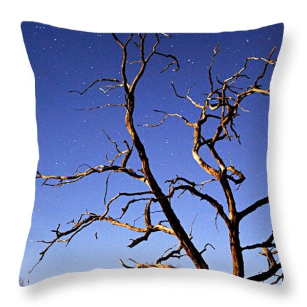 Spooky Tree Throw Pillow by Larry Ricker