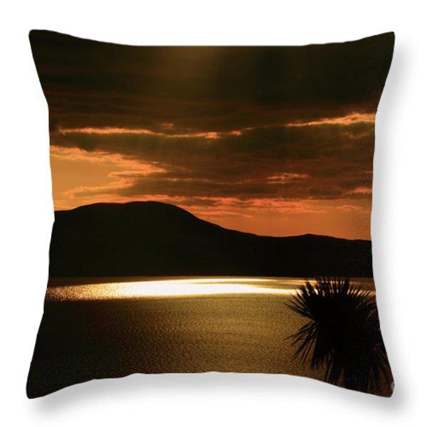 Spotlight Bay Throw Pillow by Aidan Moran