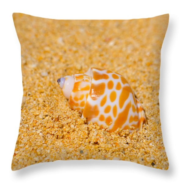 Spotted Babylon Shell Throw Pillow by Cheryl Young