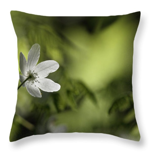 Spring Anemone Throw Pillow by Intensivelight
