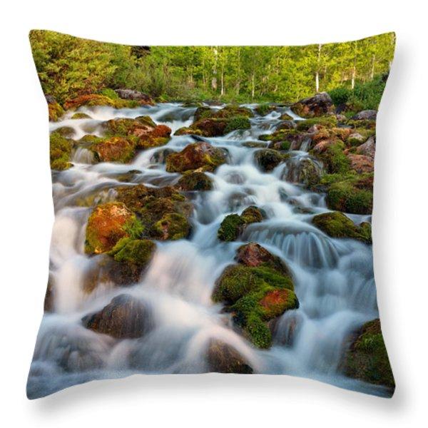 Spring Cascade Throw Pillow by Leland D Howard