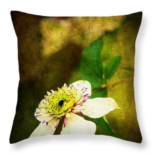 Spring Charm Throw Pillow by Darren Fisher