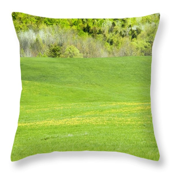 Spring Farm Landscape in Maine Throw Pillow by Keith Webber Jr