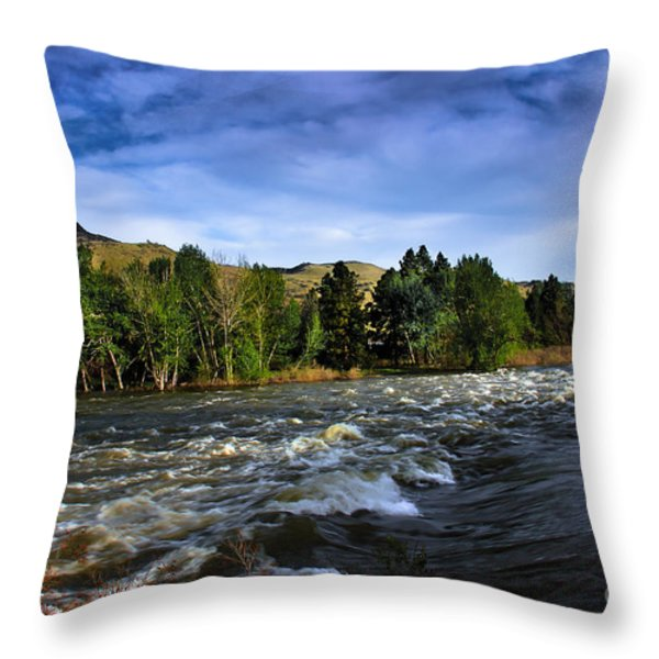 Spring Flow Throw Pillow by Robert Bales