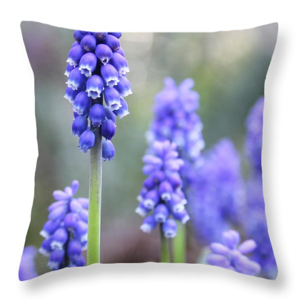 Spring Grape Hyacinth Flowers Throw Pillow by Jennie Marie Schell