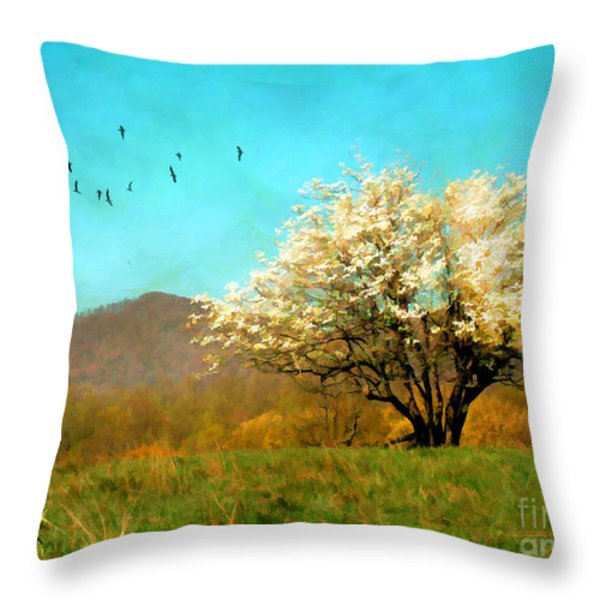 Spring In The Mountains Throw Pillow by Darren Fisher