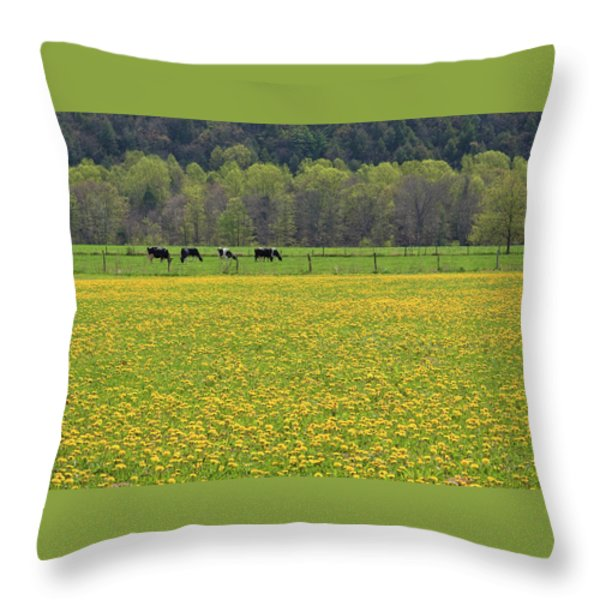 Spring Meadow Flowers Throw Pillow by John Stephens