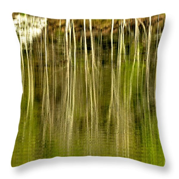 Spring Morning Reflections Throw Pillow by Thomas R Fletcher