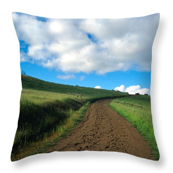 Spring Road 2 Throw Pillow by Kathy Yates