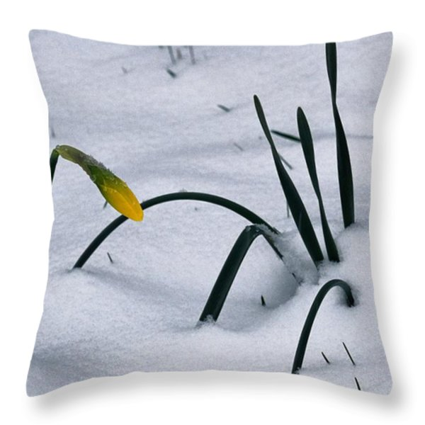 Spring Snow Coats The Daffodils Throw Pillow by George F. Mobley