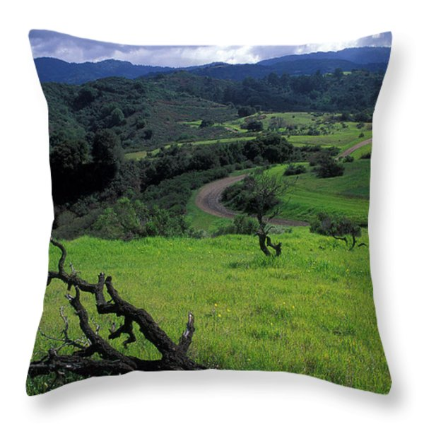 Spring Storm Throw Pillow by Kathy Yates