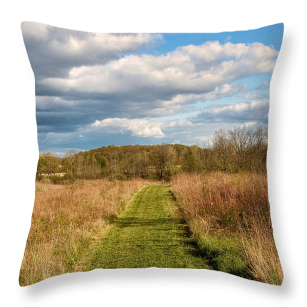 Spring's Mowed Path Throw Pillow by Rachel Cohen