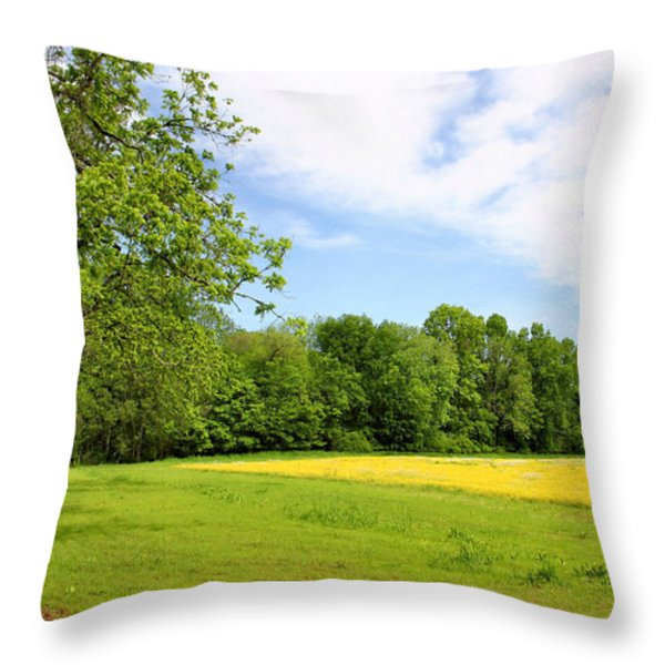 Springtime in Franklin Throw Pillow by Kristin Elmquist