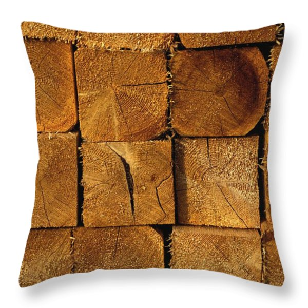 Stack Of Logs Throw Pillow by David Chapman