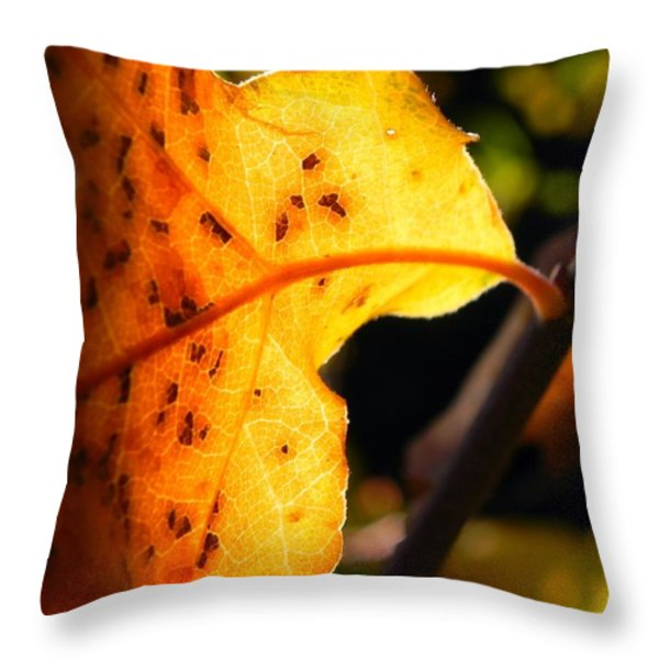 Stained Glass Of Autumn Throw Pillow by Leah Moore