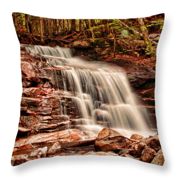 Stairs Falls Throw Pillow by Heather Applegate