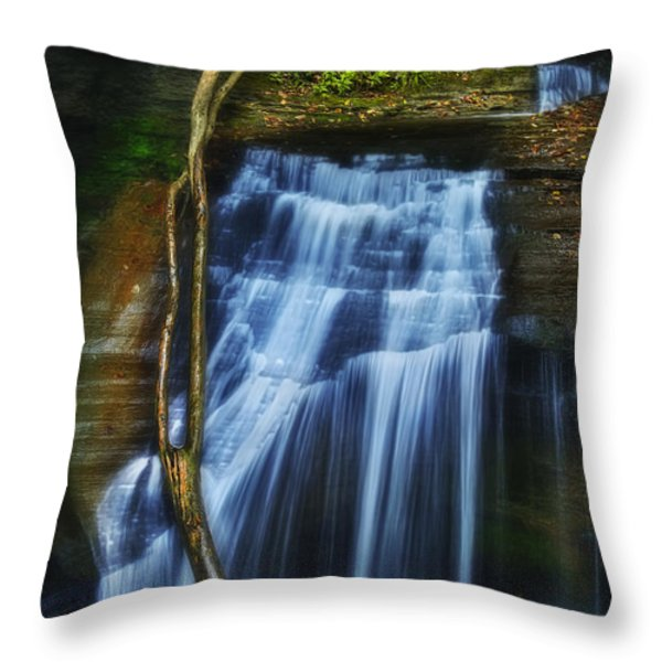 Standing In Motion Throw Pillow by Evelina Kremsdorf
