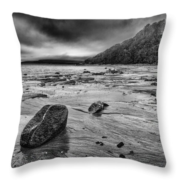 Standing still Throw Pillow by John Farnan