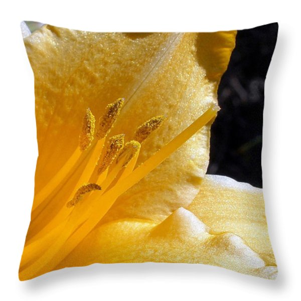 Stella D'oro - Day Lily Throw Pillow by Kaye Menner