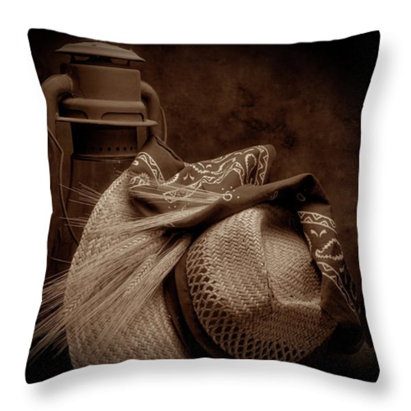 Still Life With Wheat II Throw Pillow by Tom Mc Nemar