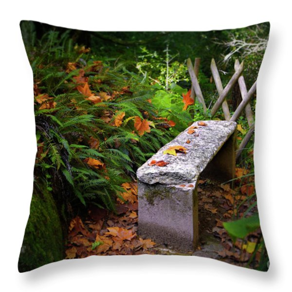 Stone Bench Throw Pillow by Carlos Caetano