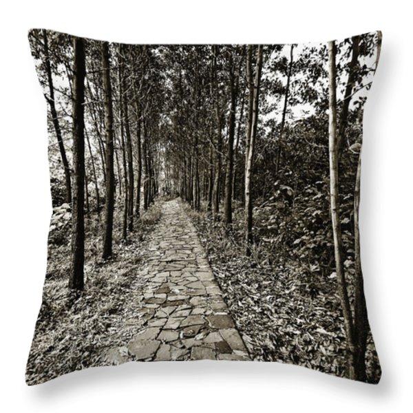 Stone Path Throw Pillow by Skip Nall