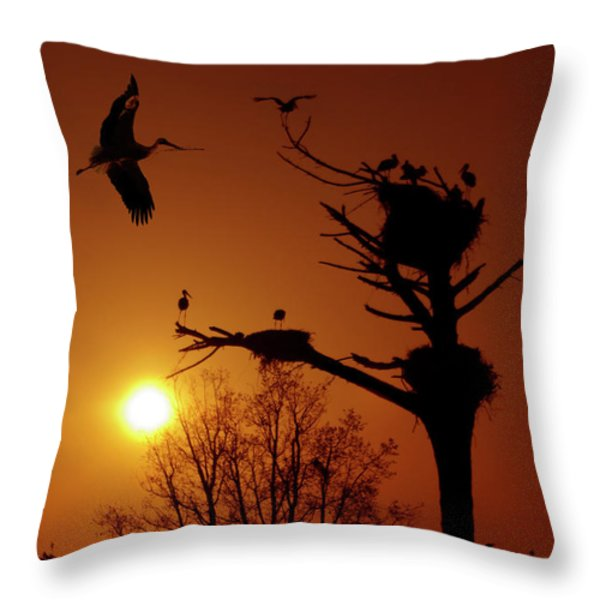 Storks Throw Pillow by Carlos Caetano