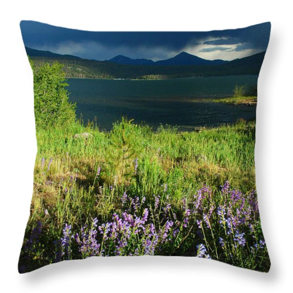 Storm in Dillon Throw Pillow by Lynn Bauer