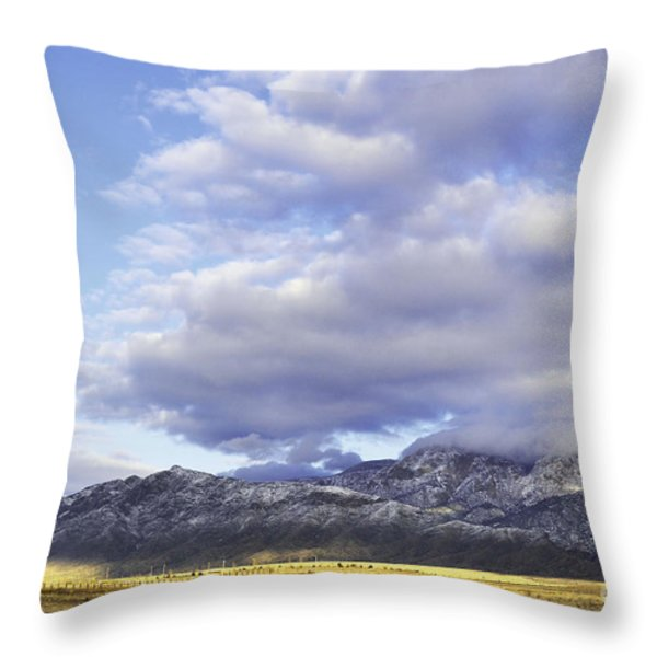 Storm Infusion Throw Pillow by Andrea Hazel Ihlefeld
