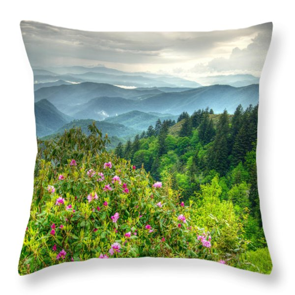Stormy Spring Skies Throw Pillow by Bob and Nancy Kendrick