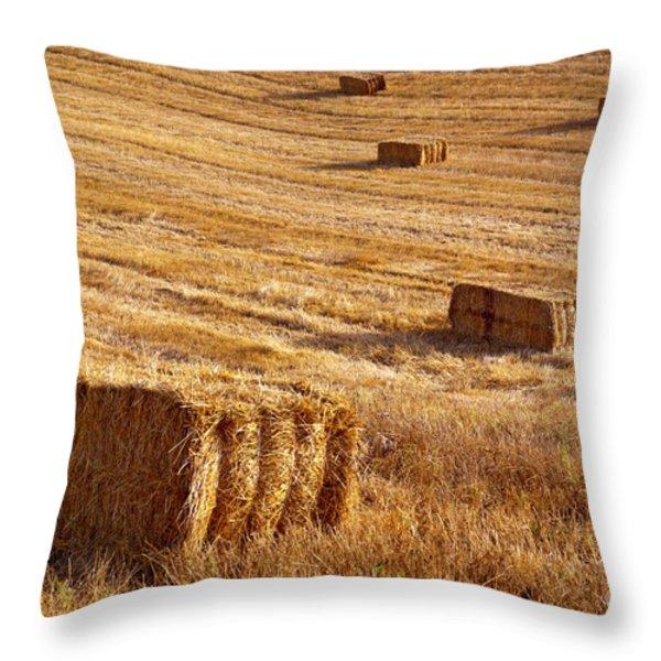 Straw Field Throw Pillow by Carlos Caetano