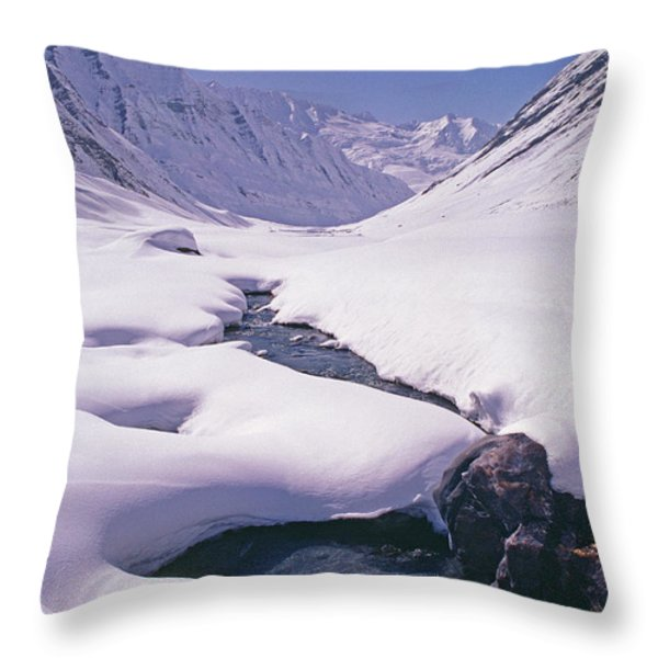 Stream In Warwan Valley Throw Pillow by Gordon Wiltsie