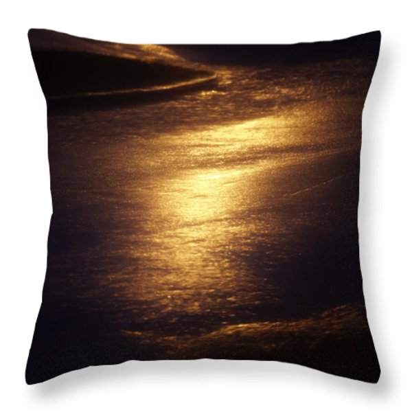 Streets of Gold Throw Pillow by Skip Nall