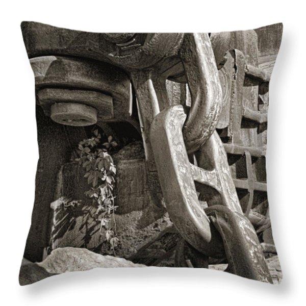 Strength I Throw Pillow by Tom Mc Nemar