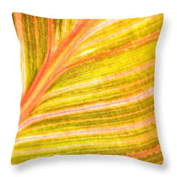 Striped Leaf Throw Pillow by Bonnie Bruno