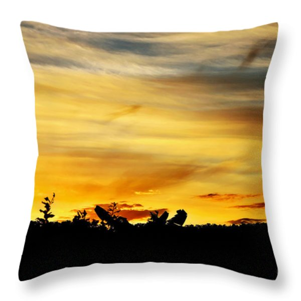 Stripey Sunset Silhouette Throw Pillow by Kaye Menner