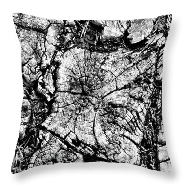 Stumped Throw Pillow by Mike McGlothlen