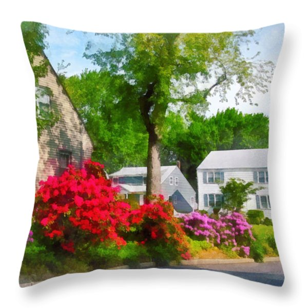 Suburban Azalea Garden Throw Pillow by Susan Savad