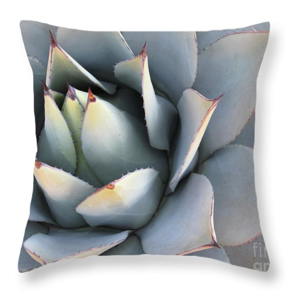 Succulent Throw Pillow by Tracy L Teeter