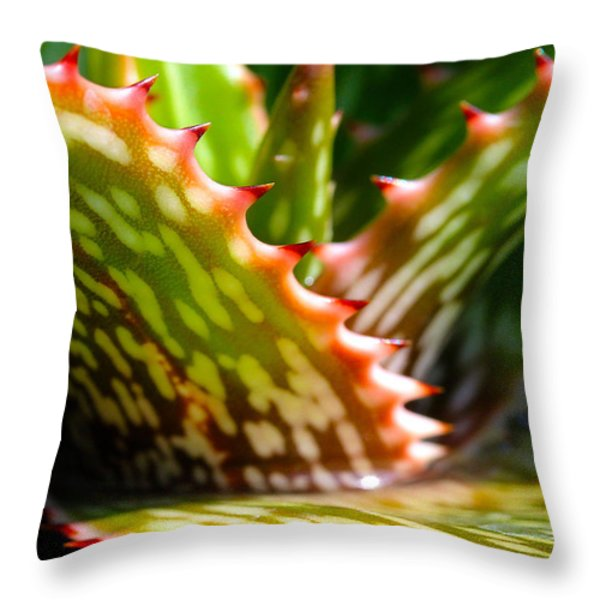 Succulents With Spines Throw Pillow by Judi Bagwell