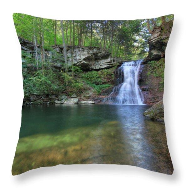 Sullivan Falls Throw Pillow by Lori Deiter
