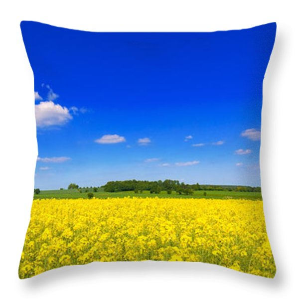 Summer Field Throw Pillow by Amanda And Christopher Elwell