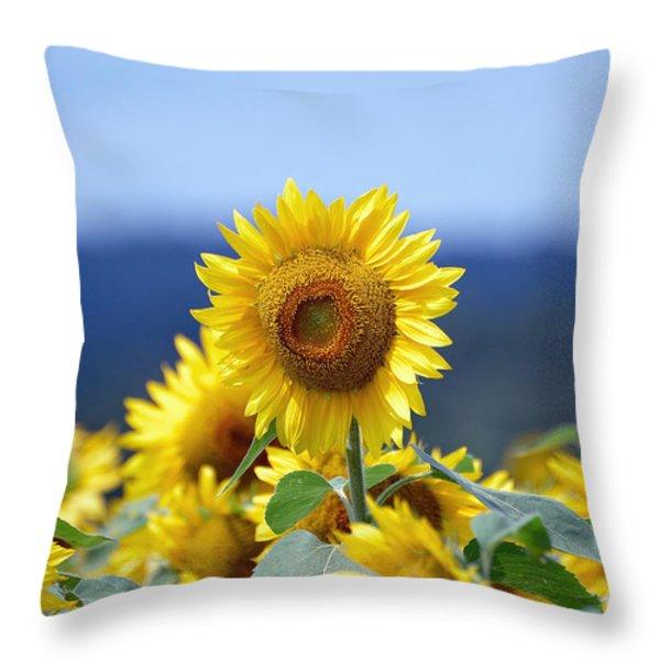 Summer Gold Throw Pillow by Edward Sobuta