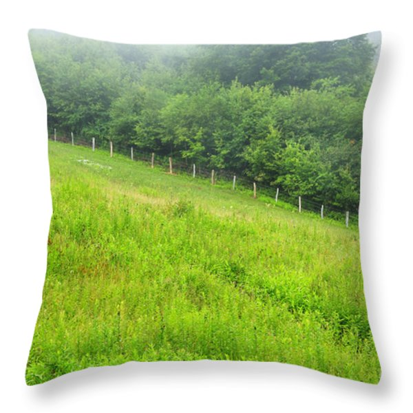 Summer Morning Rising Mist Throw Pillow by Thomas R Fletcher