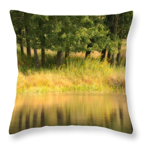 Summer Reflections Throw Pillow by Karol Livote