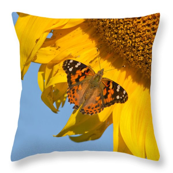 Summer time Throw Pillow by Mircea Costina Photography