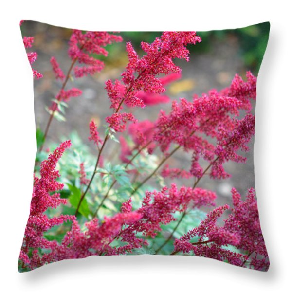 Summer's Offering Throw Pillow by Corinne Rhode