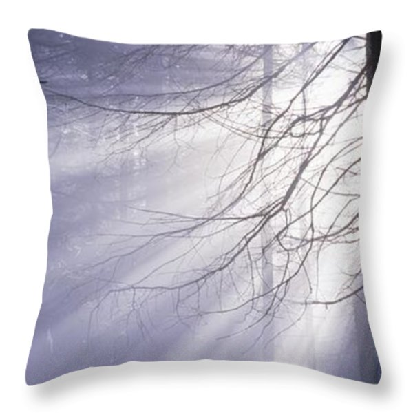 Sun breaking through mists Throw Pillow by Intensivelight